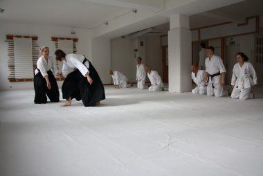 Was ist Aikido